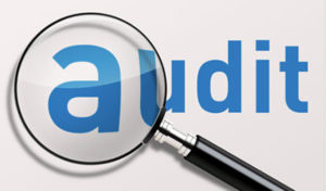 IRS and Robo Audits