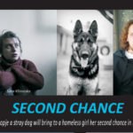 Second Chance Scores in the NSAEN Online Film Festival