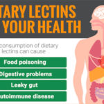 Dietary Lectins: What Are They and Should You Be Concerned?