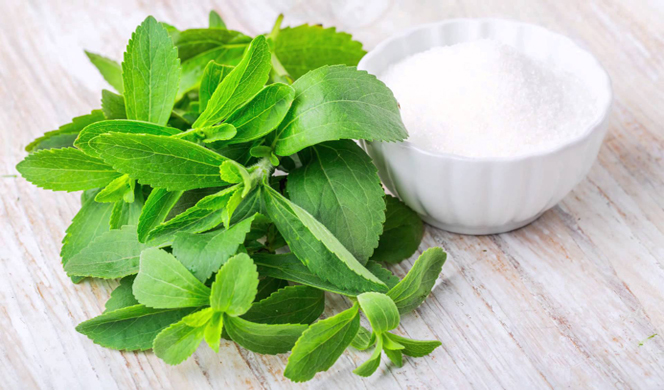 What Is Stevia? Is It Safe? 8 Good Health Benefits and Side Effects