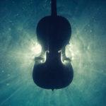 The Stradivarius Inside