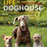 Life in the Doghouse Screening and Event